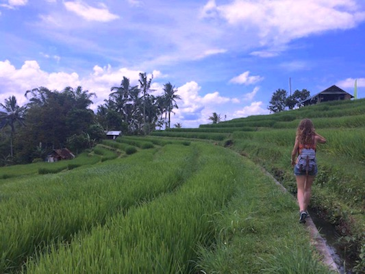 walking through the Jatiluwih rice terrace in my travel to Bali