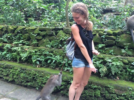 a monkey stealing my bag at the Ubud Sacred Monkey Forest