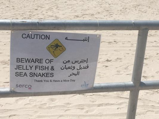 Cartello di pericolo per meduse e serpenti marini in una spiaggia della corniche di Abu Dhabi