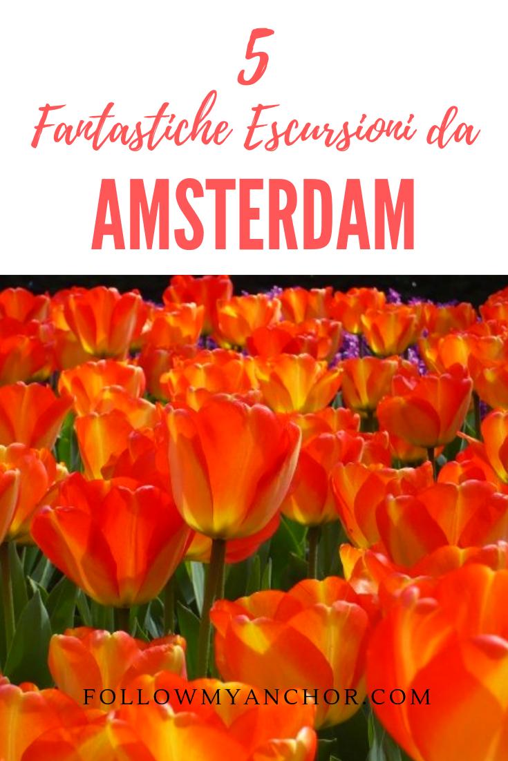 5 Fantastiche Escursioni in Olanda da Amsterdam | Parti per Amsterdam e preparati ad esplorare gli splendidi posti che si trovano nei dintorni di questa città unica. Leggi questo articolo per scoprire 5 fantastiche mete che puoi scoprire con un\'escursione di un giorno da Amsterdam. #EscursioniDaAmsterdam #Olanda #PaesiBassi #CoseDaFareDaAmsterdam #TravelBlog