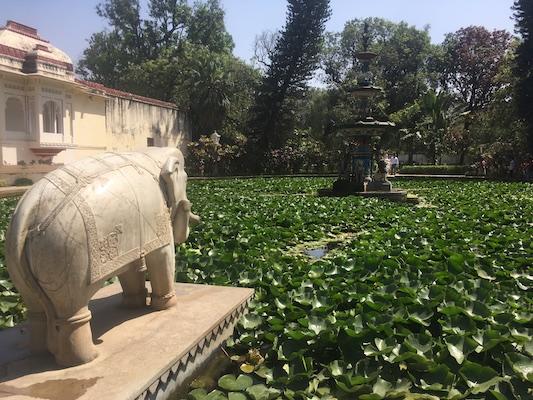 Bridesmaids garden of Saheliyon-ki-Bari in Udaipur
