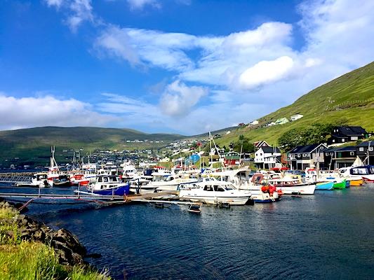Al porto di Vestmanna delle Isole Faroe
