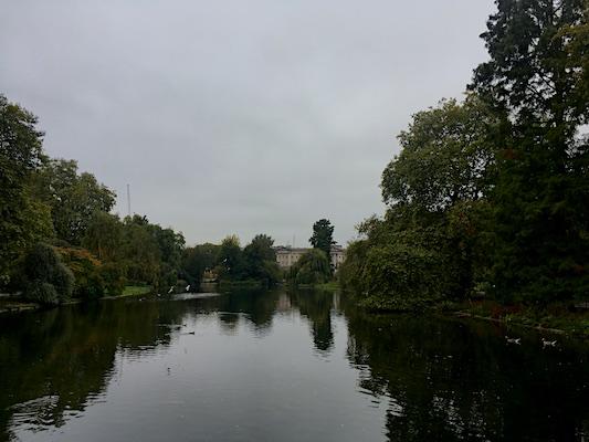 Panorama su Buckingham Palace da St. James Park