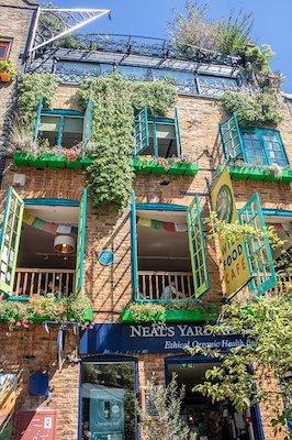 Colorful windows of Neal's Yard