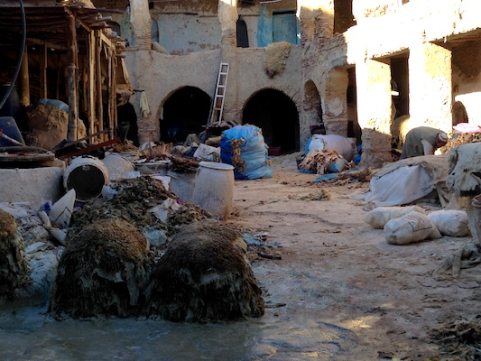 A tannery in the souk of the Medina of Fes