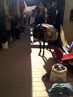 A mule in the souk in the Medina of Fes