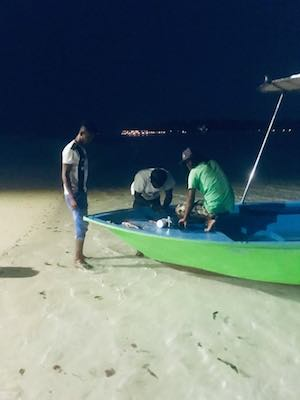 Fishermen feeding stingrays on Dhiffushi Island