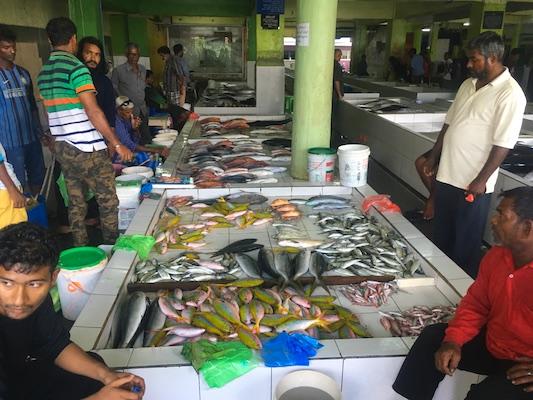 Mercato del pesce di Malè