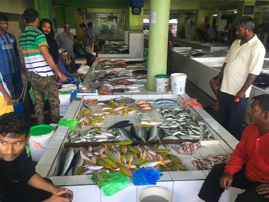 Fish market in Male