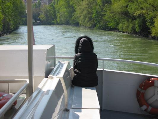 Guardando il fiume durante la crociera sul Danubio a Vienna