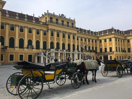 Una carrozza davanti il castello di Schonbrunn di Vienna