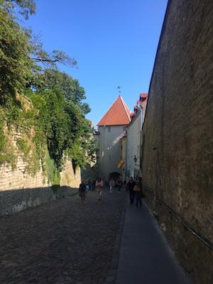 The Long Leg Gate of Tallinn