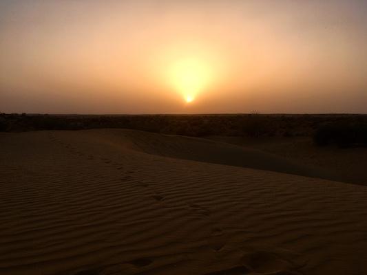 Sunset at Sam Sand Dunes in the Thar Desert