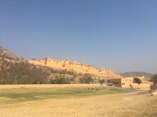 Amber Fort on top of its hill