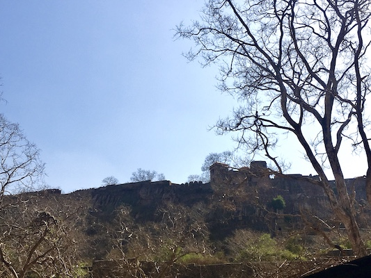 Ranthambore Fort in the National Park
